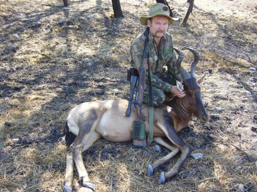 Красный хартебист, он же бубал, он же «коровья антилопа», — тоже типичный африканский трофей.