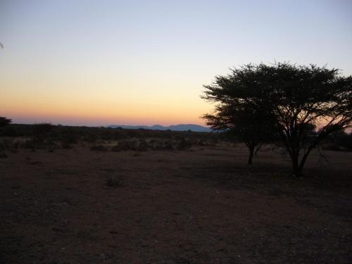 Свет в Африке как будто выключают, — от дня до ночи всего минут 15