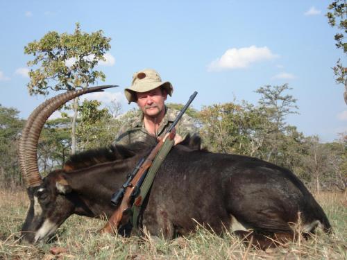Сэйбл, саблерогая антилопа