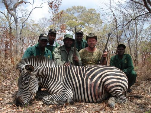 Как-то раньше не хотелось стрелять зебру, хоть и понимал, что этот жеребец скорее ближе к антилопам, чем к домашним лошадям. Но, - вот.