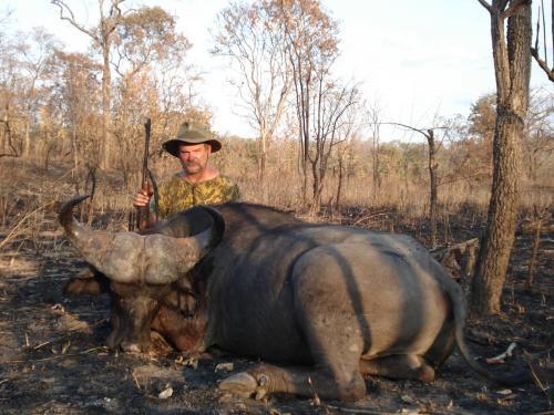 Классический баффоло, африканский саванный буйвол, к тому же с хорошим боосом. Литры испарившегося пота, вкровь разодранные коленки, многочасовая усталость, - все позади!
