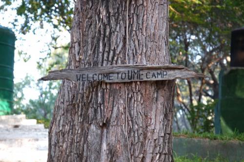 Добро пожаловать в лагерь Ume!