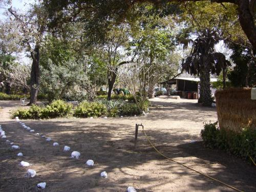 Территория лагеря