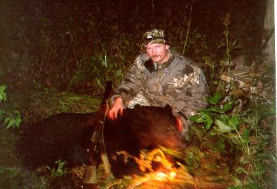 Мой первый добытый медведь, именно тот у Петички, из штуцера