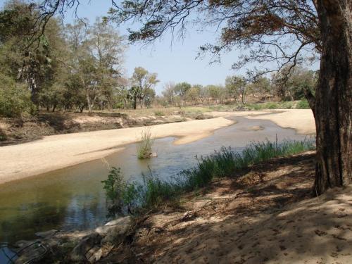Лагерь стоит прямо на берегу небольшой речушки